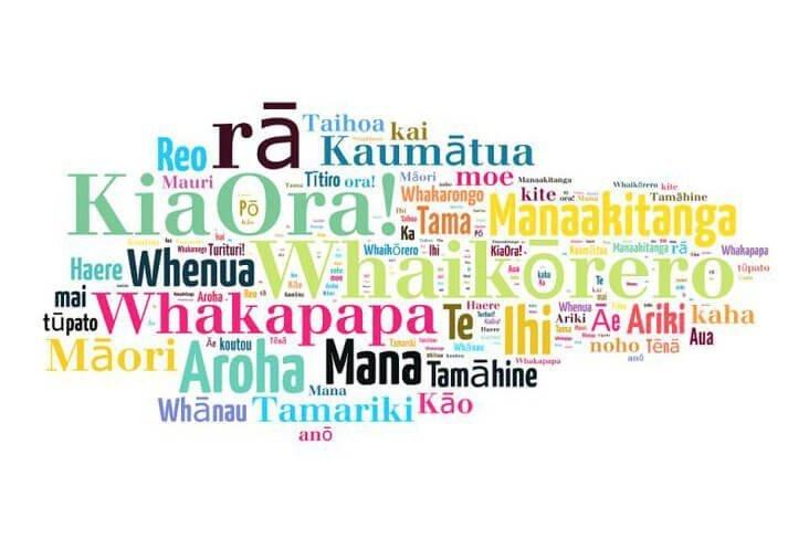 Te Reo (Maori language) training and writing